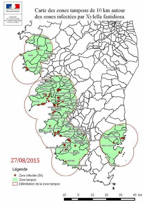 Mappa Xylella Puglia.Mappe Diffusione Xylella In Corsica Infoxylella It
